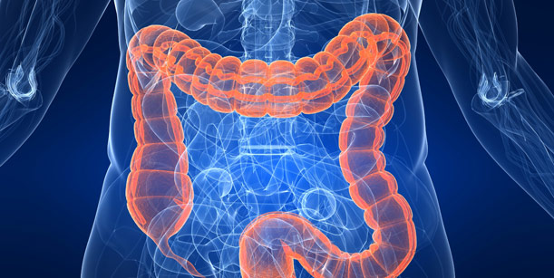Câncer de intestino: novos tratamentos