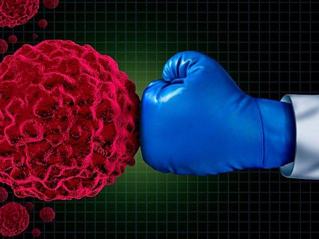 Câncer de rim: sobrevida com retirada de metástase