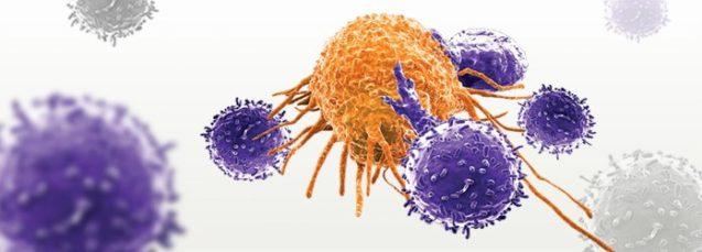 Car-t cells: nova forma de tratar câncer